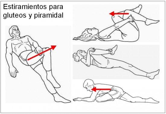 Le Muscle Pyramidal Qu Est Ce Que C Est Et Comment Ca Marche